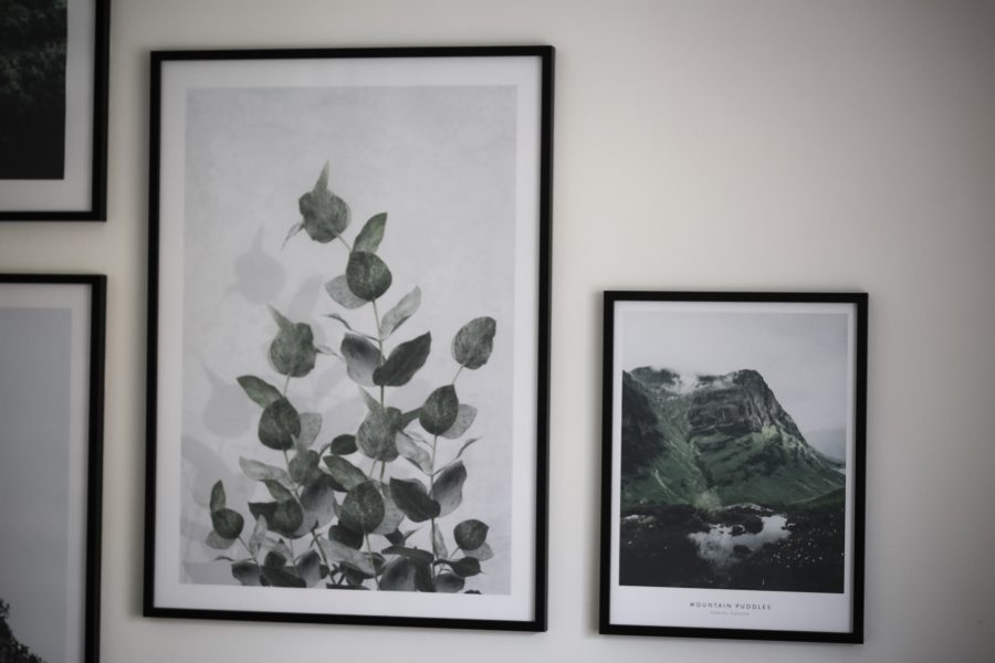 INTERIOR - Esszimmer Bilderwand mit Naturpostern by Poster Store